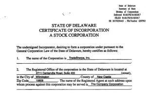 US Entity Creation Corp. versus LLC